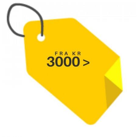Fra 3000 -